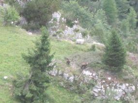 alpencross_2010_0952