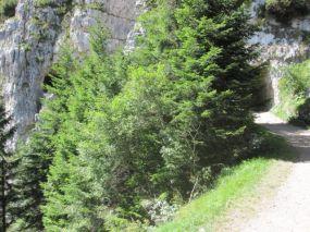 alpencross_2010_1005