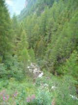 alpencross_2010_0375