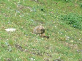 alpencross_2010_0390