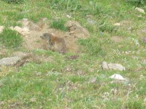 alpencross_2010_0396