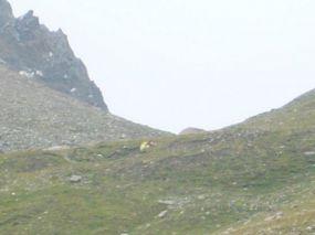 alpencross_2010_0402