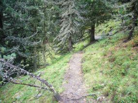alpencross_2010_0485