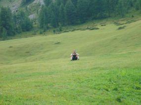 alpencross_2010_0528