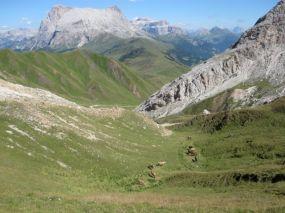 alpencross_2010_0656