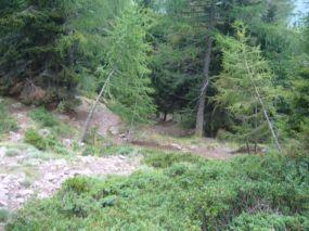 alpencross_2010_0754