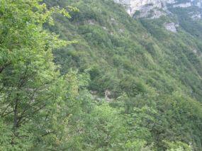 alpencross_2010_0846