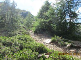 AlpenX_030816_Tag6_084